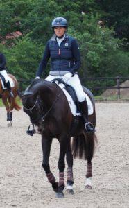 Hof Reil Pferdezucht Reiten lernen