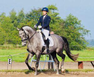 Hof Reil Pony reiten reiten lerrnen