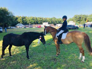 Hof REil reiten lernen Ponys